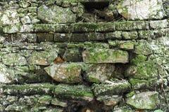 Alte Backsteinmauer des Hintergrundes Stockfotos