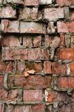 Alte Backsteinmauer des Schmutzhintergrundes, die verwittert wird und auseinander gefallen ist Die Zementzwischenlagen zwischen d Lizenzfreies Stockfoto