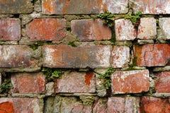 Alte Backsteinmauer des Schmutzhintergrundes, die verwittert wird und auseinander gefallen ist Die Zementzwischenlagen zwischen d Lizenzfreie Stockbilder