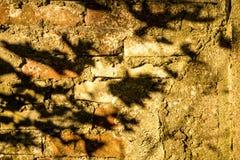 Alte Backsteinmauer eines Hauses mit Schatten lizenzfreie stockbilder