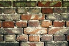 Alte Backsteinmauer für Beschaffenheit oder Hintergrund Stockbilder