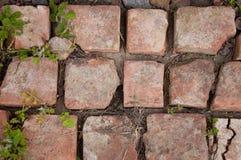 Alte Backsteinmauer Alte gebrochene orange Ziegelsteine gelegt auf dem Boden Lizenzfreie Stockfotografie