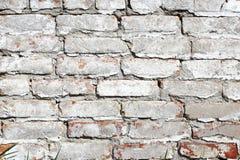 Alte Backsteinmauer gemalt mit weißer Farbe Stockfotografie