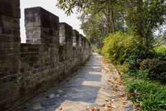Alte Backsteinmauer im fruchtbaren Frühling Lizenzfreie Stockbilder