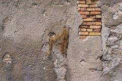 Alte Backsteinmauer mit dem zerstörten Gips Lizenzfreie Stockfotografie