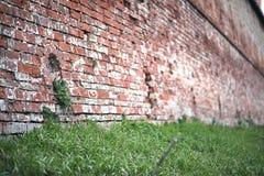 Alte Backsteinmauer mit einem Sprung Stockfotos