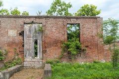 Alte Backsteinmauer mit einer alten Tür und Wachstum Lizenzfreies Stockbild