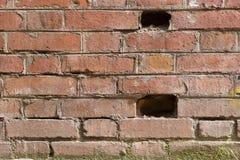 Alte Backsteinmauer mit einigen Löchern Lizenzfreie Stockfotos