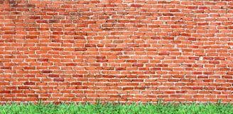 alte Backsteinmauer mit fruchtbarem Gras Stockfotografie