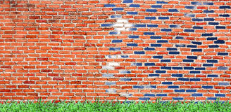 alte Backsteinmauer mit fruchtbarem Gras u. hellem Himmel Stockbild