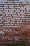 Alte Backsteinmauer mit Gips Lizenzfreie Stockbilder