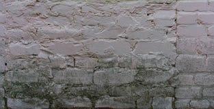 Alte Backsteinmauer mit Gips Stockbilder