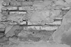 Alte Backsteinmauer mit Gips, Monoton Lizenzfreie Stockbilder