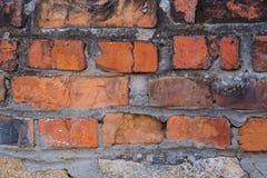 Alte Backsteinmauer mit Gips und Abziehbild Stockbild