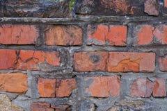 Alte Backsteinmauer mit Gips und Abziehbild Stockfotos
