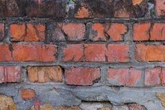 Alte Backsteinmauer mit Gips und Abziehbild Lizenzfreies Stockfoto