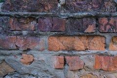 Alte Backsteinmauer mit Gips und Abziehbild Lizenzfreies Stockbild