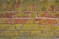 Alte Backsteinmauer mit Gips und Abziehbild Stockfoto