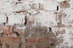 Alte Backsteinmauer mit Gipshintergrund Stockfotos