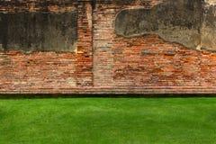 Alte Backsteinmauer mit grünem Gras Stockfotografie