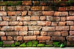 Alte Backsteinmauer mit grünem Moos Stockbild
