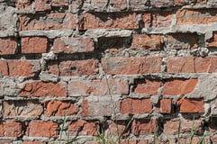 Alte Backsteinmauer mit Gras am Fuß Stockfotografie