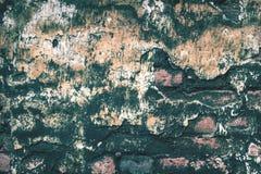Alte Backsteinmauer mit Moosbeschaffenheitshintergrund Lizenzfreies Stockbild