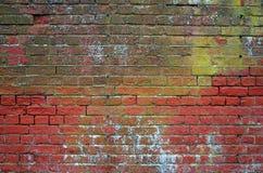 Alte Backsteinmauer mit Pilz und Zerfall Lizenzfreie Stockfotografie
