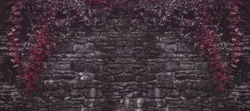 Alte Backsteinmauer mit roten Anlagen Lizenzfreies Stockbild