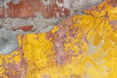 Alte Backsteinmauer mit Schalengips Stockbilder