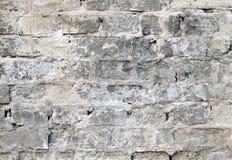 Alte Backsteinmauer mit Schalengips Stockfotografie