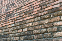 Alte Backsteinmauer mit selektivem Fokus Stockbilder
