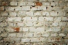 Alte Backsteinmauer mit weißem Farbenhintergrund-Beschaffenheitsabschluß oben Stockfoto