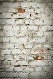 Alte Backsteinmauer mit weißem Farbenhintergrund-Beschaffenheitsabschluß oben Lizenzfreies Stockfoto