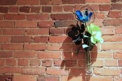 Alte Backsteinmauer und einfacher Blumenvase Stockbilder