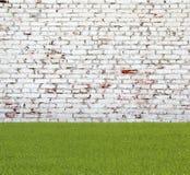 Alte Backsteinmauer und grünes Gras Stockfotos