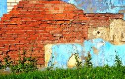 Alte Backsteinmauer und Grünpflanzen draußen Lizenzfreies Stockfoto