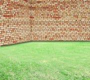 Alte Backsteinmauer und neues grünes Gras Stockbilder