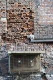 Alte Backsteinmauer und Spitzen gegen Vogeldung Stockbilder