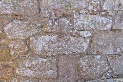 Alte Backsteinmauerbeschaffenheit mit Flechte Stockfotografie