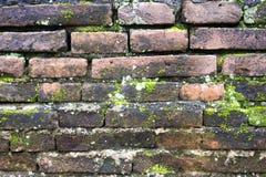 Alte Backsteinmauerbeschaffenheit mit MOS Stockbilder