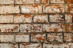 Alte Backsteinmauerbeschaffenheit unter großem unterem großem Stück Gips Co Lizenzfreies Stockbild