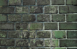 Alte Backsteinmauerhintergrundfarbe Stockfotos