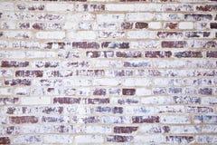 Alte Backsteinmauern der historischen Häuser Lizenzfreie Stockbilder