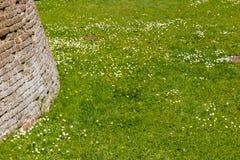 Alte Backsteinmauern und grünes Gras Lizenzfreies Stockbild
