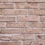 Alte Backsteinmauernahaufnahme Stockfotografie