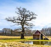 Alte Badeanstalt in viciniy von Ungermuizha-Landsitz, Lettland Lizenzfreie Stockfotografie