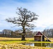 Alte Badeanstalt in viciniy von Ungermuizha-Landsitz, Lettland Stockbilder