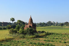Alte Bagan-Tempel bei Sonnenuntergang, Mandalay, Myanmar Lizenzfreie Stockbilder