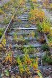 Alte Bahngleise Stockbild